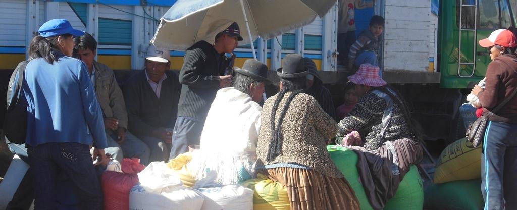 Quinoa market resources